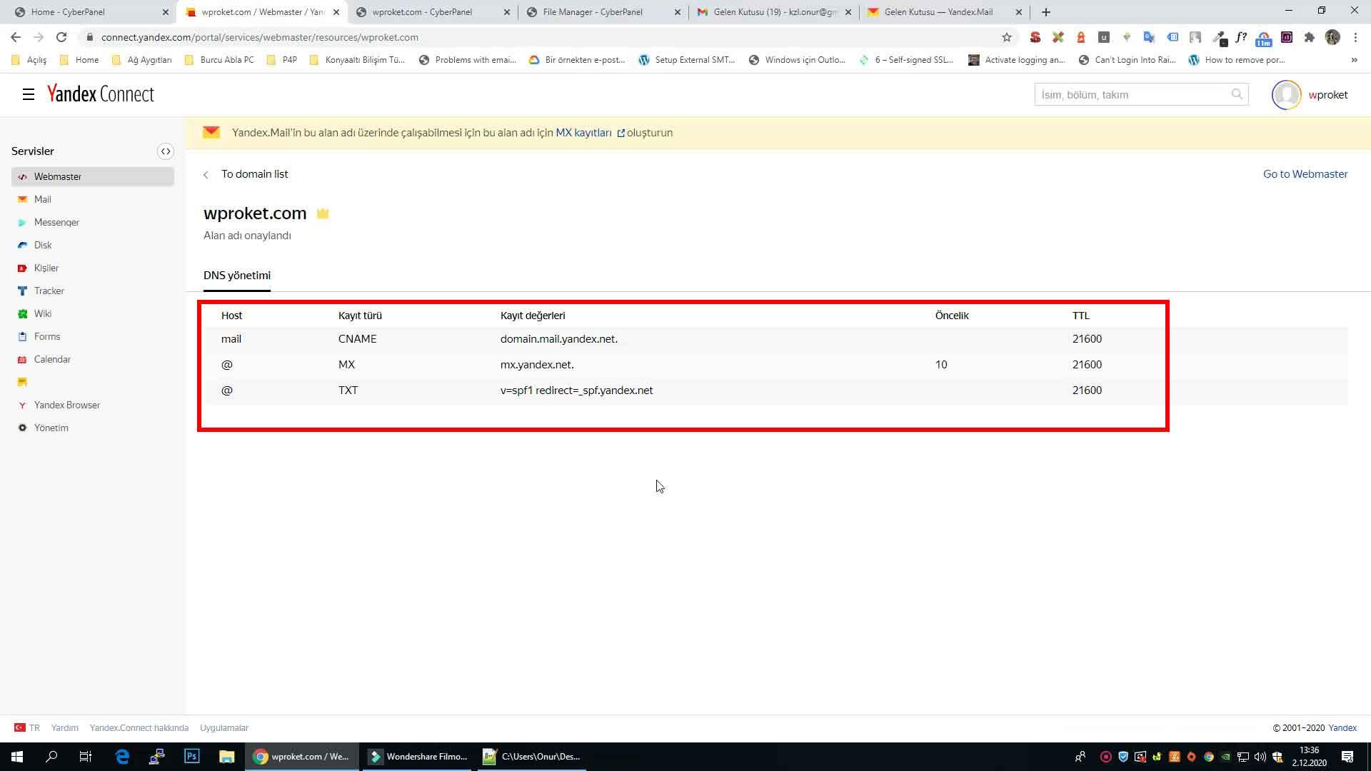 Yandex kurumsal mail DNS ayarları